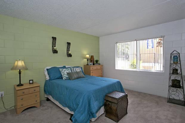 Spacious bedroom with oversized windows in Campus Walk bedroom