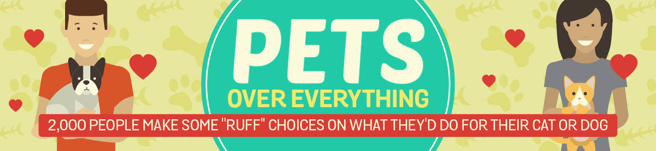 Pets Over Everything - Rentable Apartments