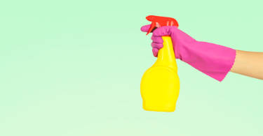 apartment cleaning tasks
